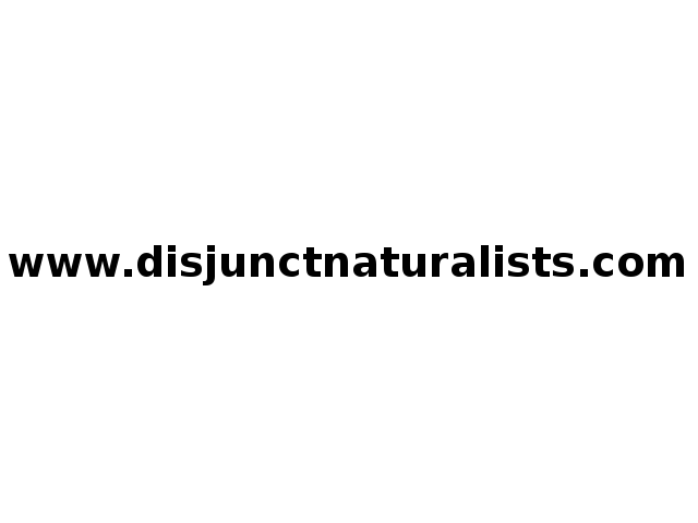 Disjunct Naturalists - Slime Moulds
